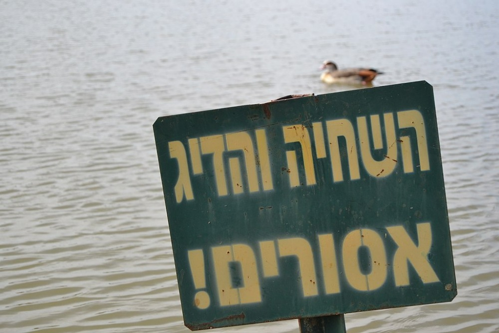 PikiWiki_Israel_46239_Environment_of_Israel